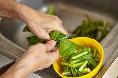 Овощ вырезывания Стоковое Изображение