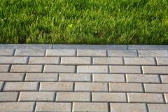 用色情绿草草坪,标示用小混凝土板和盖的一条人行道的照片 库存照片