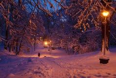 Сцена вечера зимы Стоковое Изображение