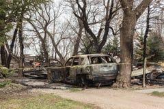 Старый ожога автомобиль вне сидя среди высоких деревьев Стоковая Фотография