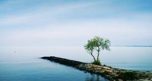 安静和平安的湖 免版税库存照片