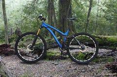 велосипед велосипед перспектива горы рук пущи фокуса поля глубины велосипедиста отмелая Стоковые Фото
