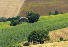 Ландшафт лета в мартах (Италия) Стоковые Изображения