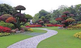 热带修剪的花园庭院 免版税图库摄影