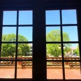 在窗口的春天 库存图片