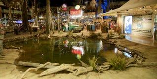 室内池塘在低音赞成商店,孟菲斯田纳西 免版税图库摄影