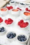 鲜美夏天莓果 免版税库存图片