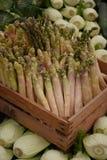 新鲜的芦笋和茴香 库存照片