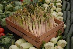 新鲜的芦笋和茴香 库存图片