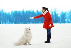 妇女所有者在冬天训练白色萨莫耶特人狗户外 免版税库存照片