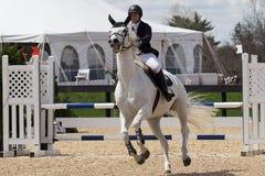 骑马展示跳跃 库存照片