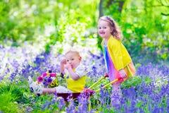 孩子在有会开蓝色钟形花的草花的一个庭院里 库存图片