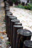 оградите солнцецветы лета лужка деревянные Стоковое Фото