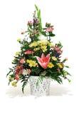花卉排列 免版税库存图片