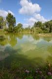 在天期间,镇静池塘 免版税库存照片