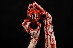 血液和万圣夜题材:可怕的血淋淋的在黑背景隔绝的手举行被撕毁的流血的人的心脏在演播室 免版税库存图片