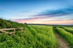 英国乡下 免版税图库摄影