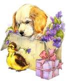 水彩逗人喜爱的小狗和一点鸟、礼物和花背景 库存图片