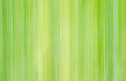 垂直线在轻淡优美的色彩下 免版税库存图片