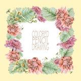 与美丽的春天花和植物的方形的框架 图库摄影