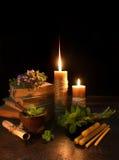 与四片叶子三叶草的蜡烛 库存图片