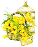 郁金香花、金丝雀和装饰鸟笼 水彩 免版税库存照片