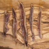 在木头的鲥鱼内圆角 库存照片