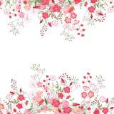详细的等高正方形框架用在白色和野花隔绝的草本、玫瑰 您的设计的贺卡 免版税库存照片