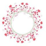 详细的等高花圈用在白色和红色花隔绝的草本 您的设计的圆的框架 图库摄影