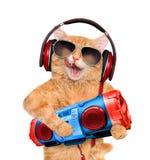 在耳机的猫听到与录音机的音乐的 免版税库存照片