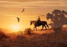 Κάουμποϋ που οδηγά σε ένα άλογο Στοκ φωτογραφία με δικαίωμα ελεύθερης χρήσης