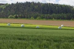 春天风景在巴伐利亚 库存照片