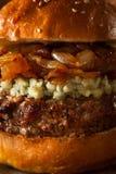 水多的青纹干酪汉堡包 免版税库存照片