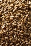 Сырцовые органические, который шелушат семена подсолнуха Стоковые Изображения RF
