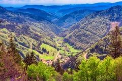 费尔德伯格山在春天 免版税图库摄影