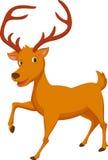 逗人喜爱的鹿动画片 免版税图库摄影