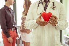 关于心脏病学的医疗概念 拿着塑料象心脏的医生 库存照片