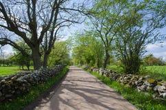 有生苔石墙的石渣路 免版税库存照片