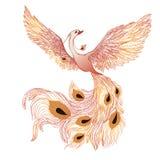 Птица Феникса Стоковое Изображение
