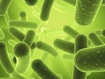 βακτηρίδια Στοκ εικόνα με δικαίωμα ελεύθερης χρήσης