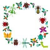在白色背景的滑稽的昆虫蜘蛛蝴蝶蜻蜓螳螂甲虫黄蜂瓢虫 向量 免版税库存图片