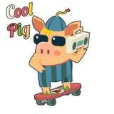 凉快的猪太阳镜滑板录音机 库存照片
