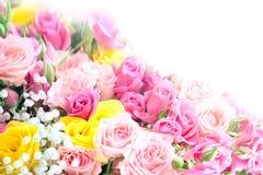 花束玫瑰顶视图 免版税库存图片