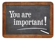 您是重要的在黑板 免版税库存照片