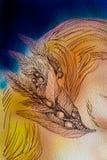 在纸的线性装饰羽毛图画 免版税库存照片