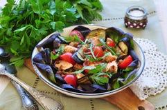 素食沙拉用烤茄子、三文鱼和扁豆 免版税库存照片