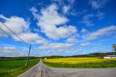 Шведская сельская местность Стоковые Изображения RF