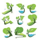 蓝色下落绿色叶子本质符号水 免版税图库摄影