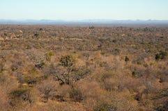 ландшафт Африки южный Стоковое Изображение RF