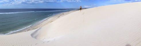 珊瑚海湾,西澳州 免版税图库摄影